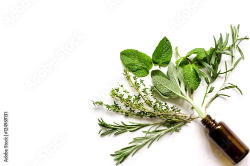 mint, sage, rosemary, thyme - aromatherapy white background