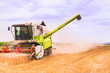 combine harvester works on wheat field