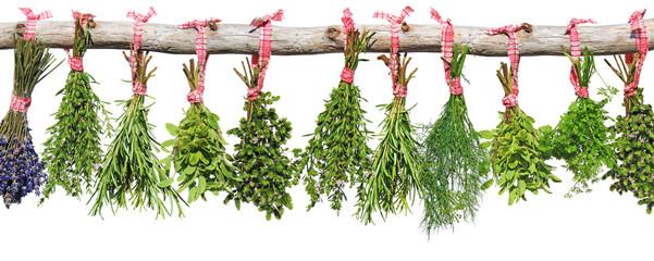 kräutersträußchen hängen an holzast
