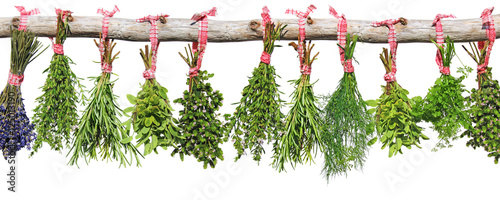 Fototapeta kräutersträußchen hängen an holzast