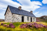 Idyllic farmland and livestock in the stunning wilderness of Assynt in the Scottish Highlands. - 125036319