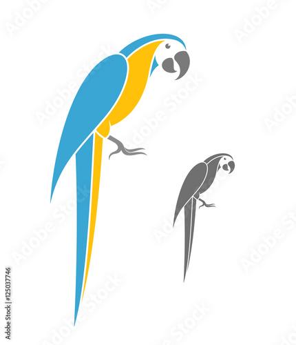 Fototapeta Macaw parrot. Vector illustration