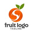 fruit vector logo - 125066583