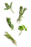 mint, sage, rosemary, thyme - tufts of herbs white background - 125080984