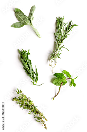mint, sage, rosemary, thyme - tufts of herbs white background