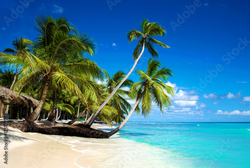 Fotobehang Tropical strand Tropical beach in caribbean sea, Saona island, Dominican Republic