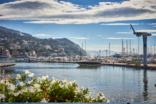 Harbor and city of Santa Margherita Ligure in Italy / Travel Location at mediter Poster