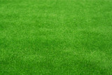 Fototapety Fake green grass as background