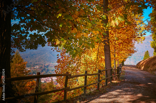 Autunno Poster