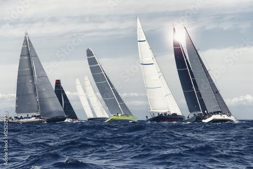 Plexiglas Zeilen sial boat race