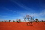 Burnt desert in Australia