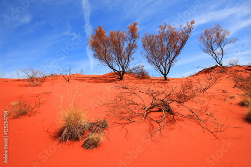 Foto op Canvas Baksteen Burnt desert in Australia