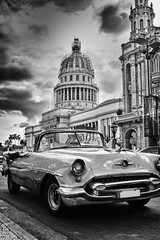 Black and white image of Havana street with vintage car and Capi © javigol860101