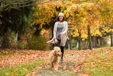 Happy woman walking her Golden Retriever Dog in a park with Fall - 125321332