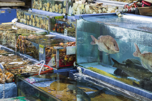 Noryangjin Fisheries Wholesale Market , Expansive wholesale & re Poster