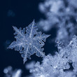 Crystal Blue Snowflake at night.jpg