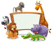 Постер, плакат: Safari animals board