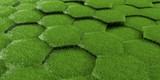 Digital hexagons background grass