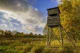 Hunting Tower, autumnal forest