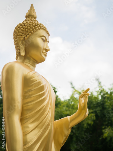 Juliste Golden buddha statue.