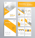page layout for company profile, annual report, brochure, and flyer layout template. with info graphic element. and vector A4 size  for editable   - 125565317