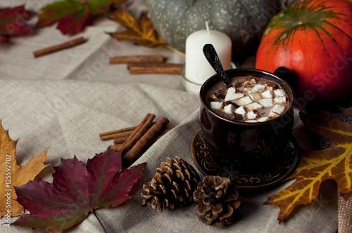 Papiers peints Chocolat Горячее какао с маршмэллоу, корицей и тыквой