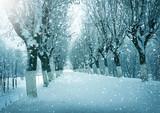 Winter landscape, snowstorm
