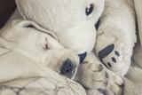 Kuscheltier Eisbär und kleiner süßer labrador welpe kuscheln zusammen auf dem sofa
