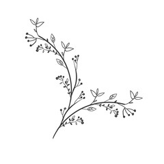 gray scale decorative branch with leafs vector illustration