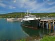 Tour boats at anchor