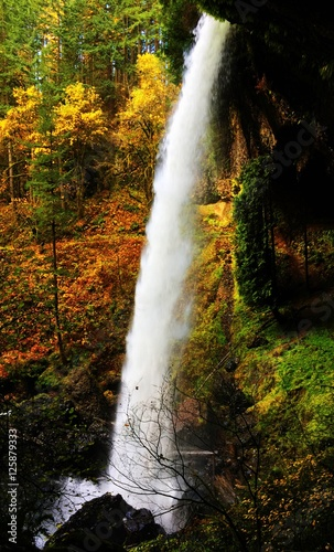 silver-falls-jesienia