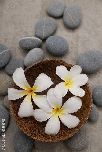 Poster Spa frangipani in wooden bowl with spa stones on grey background.