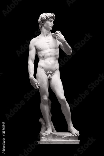 David Statue by Michelangelo in Galleria dell'Accademia (uffizi museum) in Florence Poster