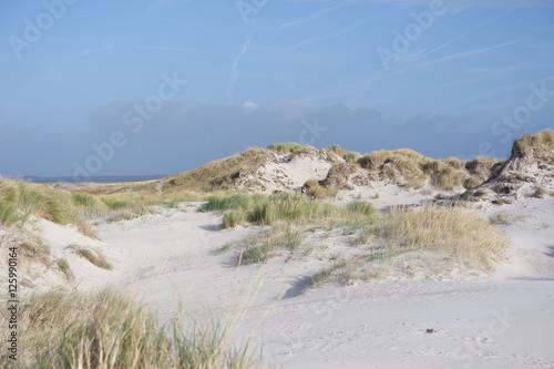 Aluminium Noordzee Dünenlandschaft am Meer