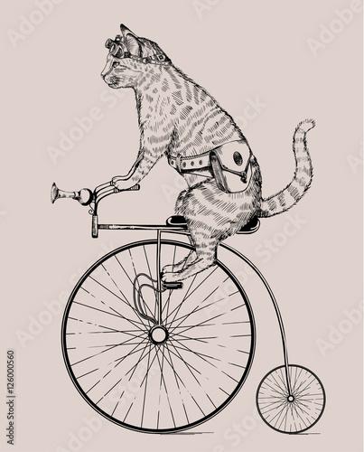 steampunk-katze-auf-retro-fahrrad-mit-tasche-und-glasern-in-radierart-lokalisiert