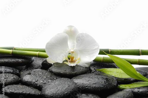Plexiglas Spa White orchid with wet black stones ,grove,leaf on wet background