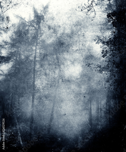Beautiful Abstract Faded Grunge Background With Trees - 126129526