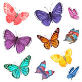 collection of flying butterflies. watercolor painting