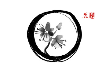 Oriental cherry branch blossoming in black enso zen circle on white background. Sakura hand drawn in Traditional Japanese ink painting sumi-e. Contains hieroglyphes - flower and love