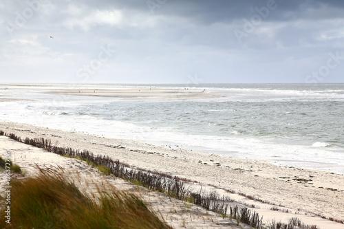Küstenlandschaft auf Amrum an der Nordsee