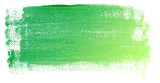 Abstract green watercolor on white background.This is watercolor splash.It is drawn by hand.