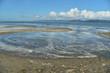 low tide on the Oregon Coast