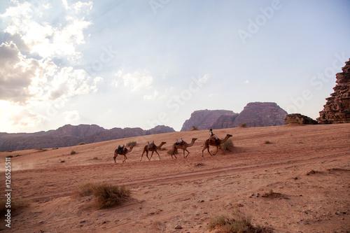 Poster Majestic mountain desert of Wadi Rum in Jordan