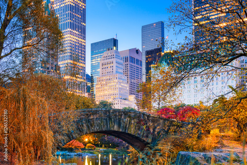 Central Park Autumn Poster