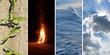 vier Elemente, Elements