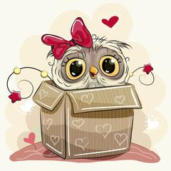 Cute Cartoon Owl girl and a box