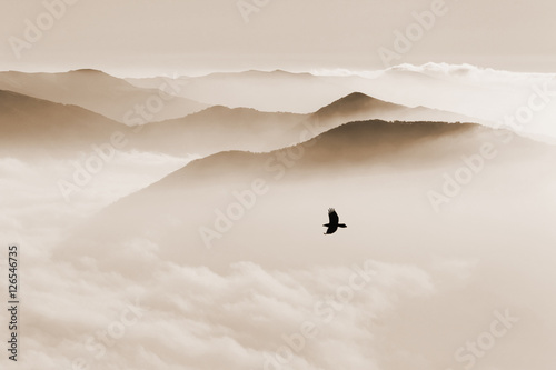 Silhouettes of mountains in the mist and bird flying in sepia to - 126546735