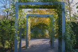 Blue pergola in autumn