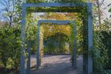 Blue pergola in autumn