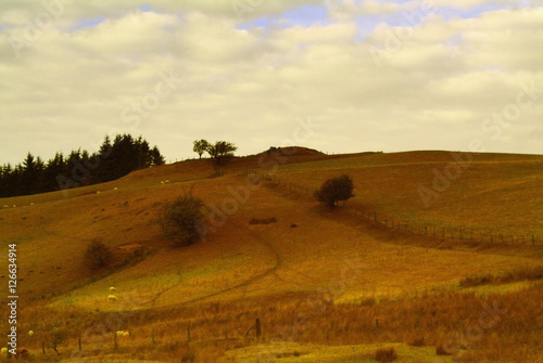 Poster motte and bailey castle prehistoric earthwork